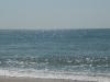 тихое море
