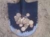beach-monety