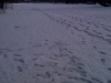 reka-zimoy