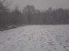 первый снег на огороде