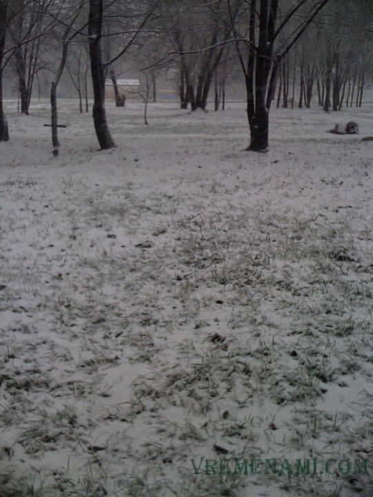 pervyy-sneg