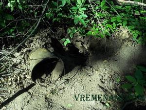 лесная могила