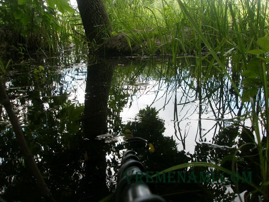 Tiger на АСЕ 250 под водой