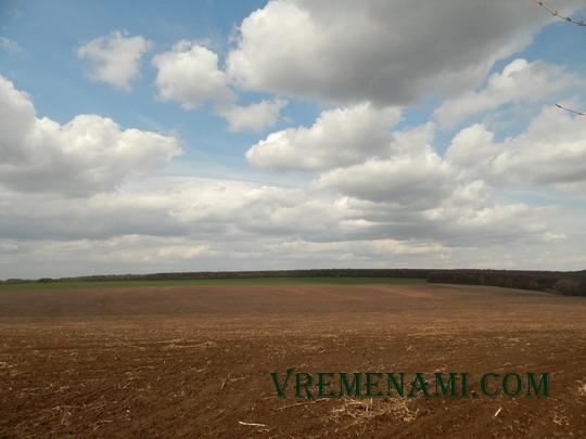 поле – место копа