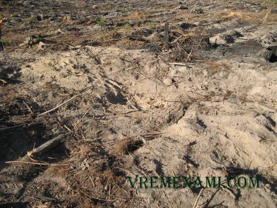 в процессе закопа ямы